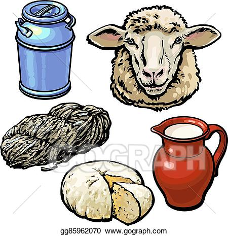 Vector stock head of. Lamb clipart sheep wool