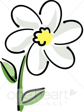 White wedding flower. Daisy clipart