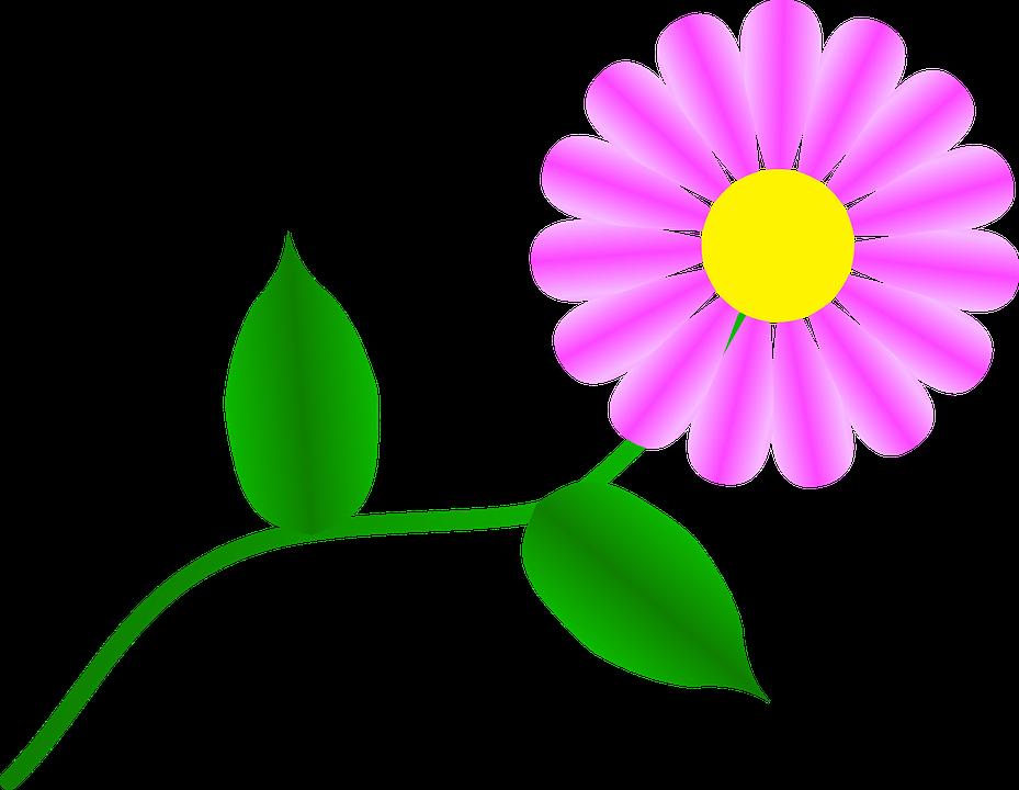 Blue daisy flower free. Daisies clipart animated