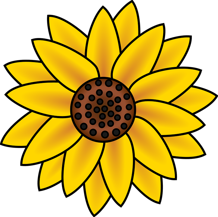 petal daisy cliparts. Daisies clipart animated
