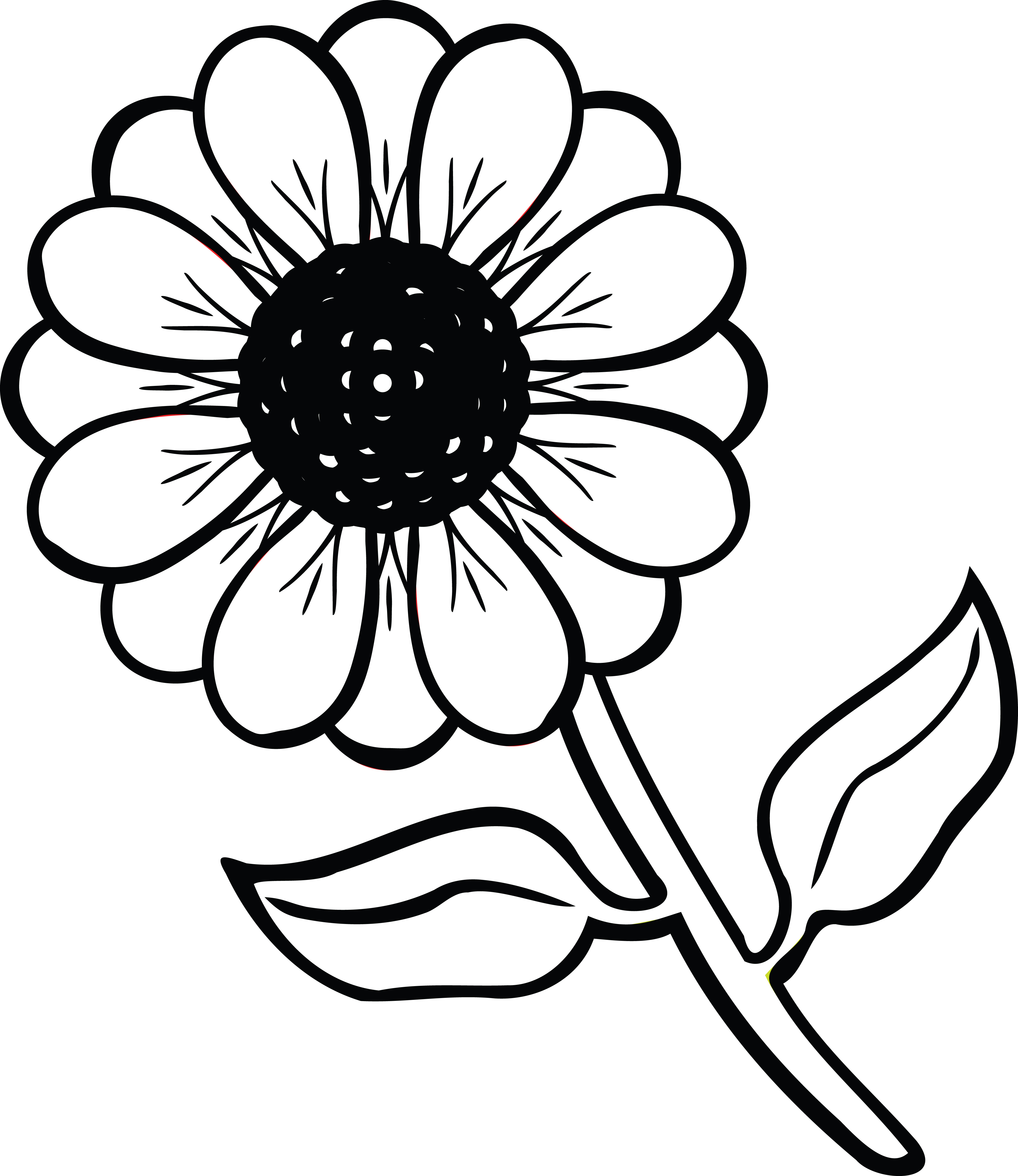 Daisies clipart black and white. Daisy free download best
