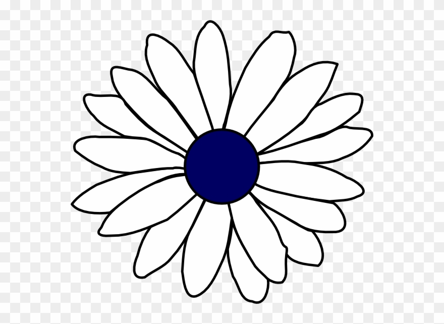 Daisy s art flower. Daisies clipart black and white