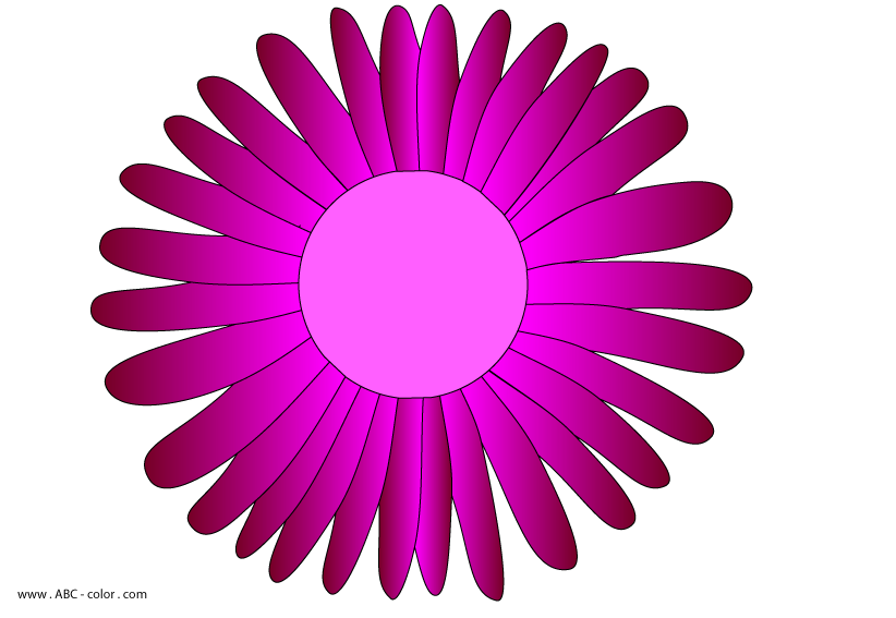Daisies clipart color. Daisy wheel raster download