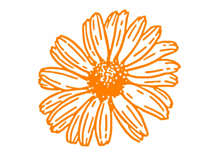 Daisies clipart color. How to set use