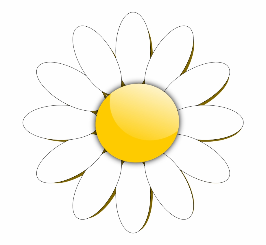 Daisies clipart daisey. Flower pinterest file and