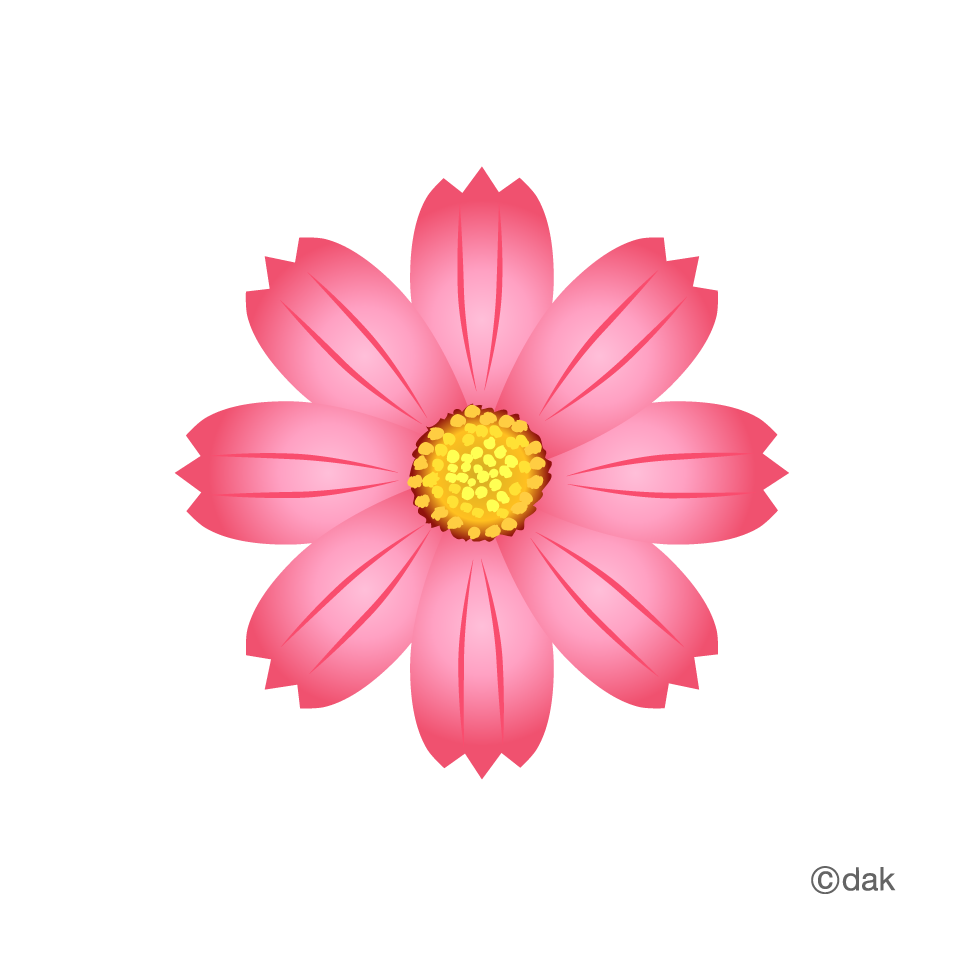 Flower graphic png. Cosmos pictures of clipart