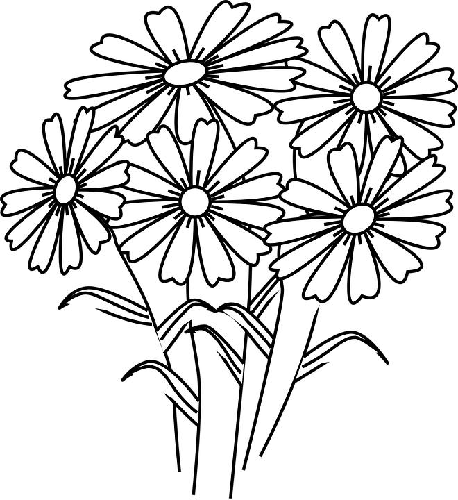 Daisies clipart face. Five flower frames illustrations