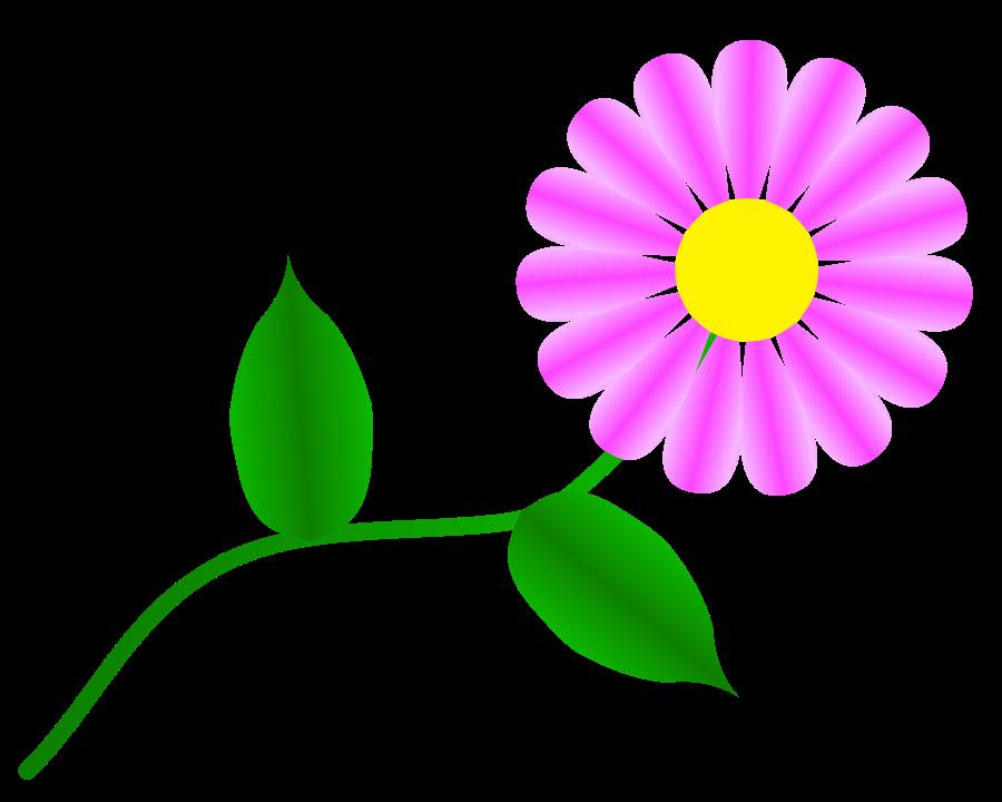Fuchsia cliparts for you. Daisy clipart landscape