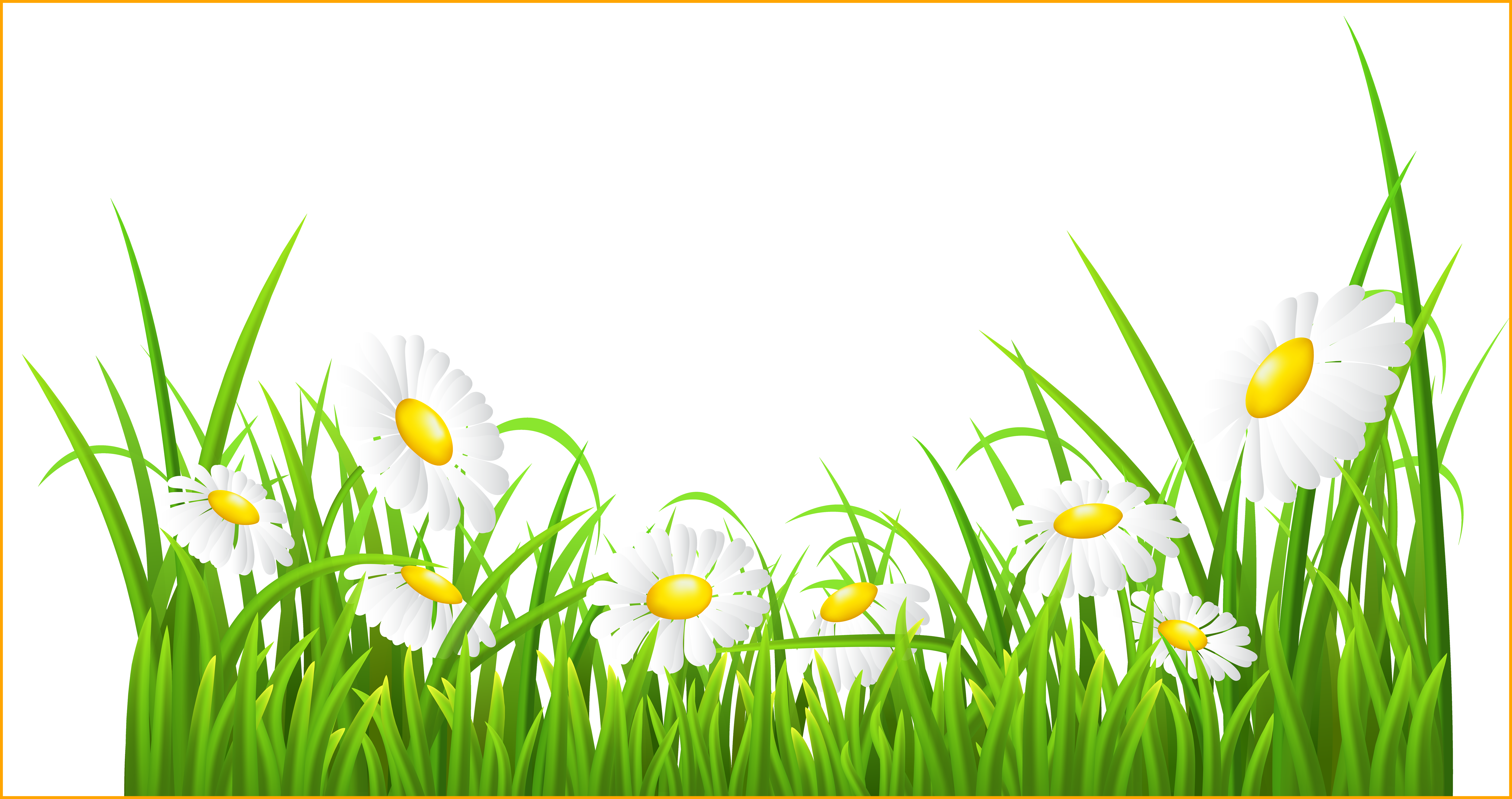 Daisy clipart daisie. Incredible red transparent png