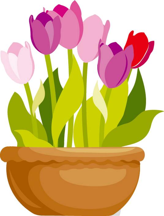 Poppy clipart potplant. Fleurs flores flowers bloemen