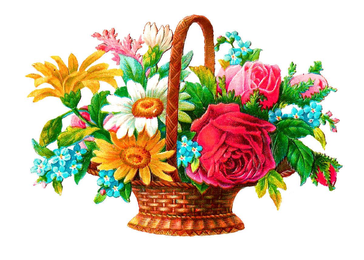 Antique images stock digital. Daisies clipart flower basket