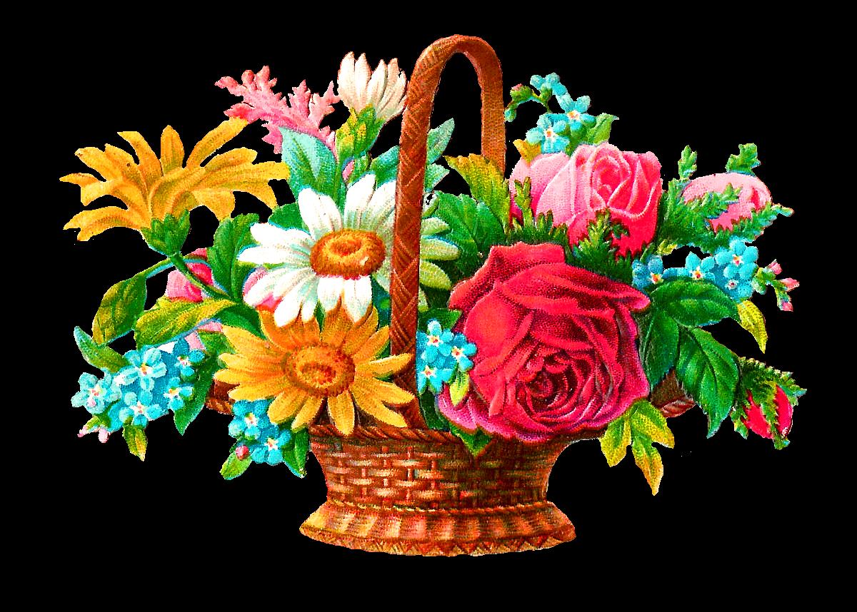 Daisies clipart flower basket. Antique images stock digital