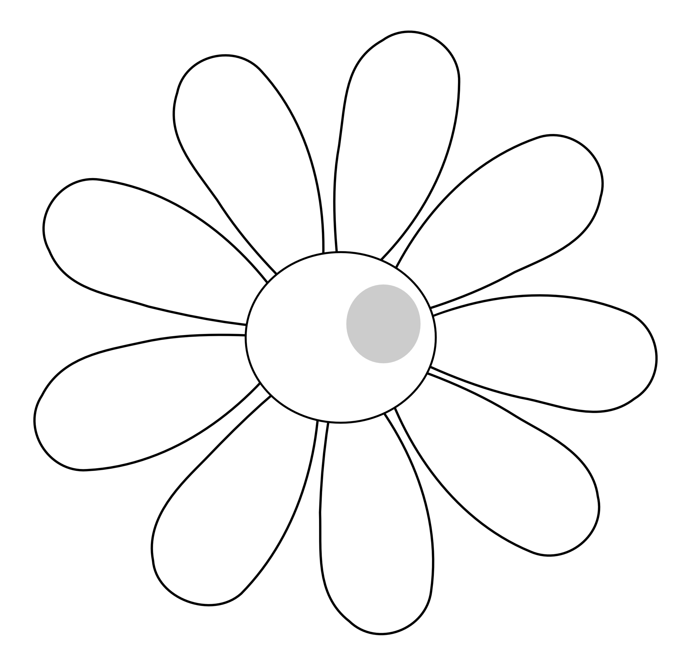 collection of daisy. Flower clipart outline