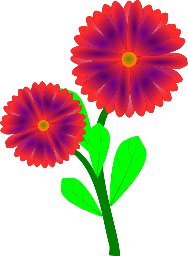 Daisies clipart flower day. Gerbera daisy free download