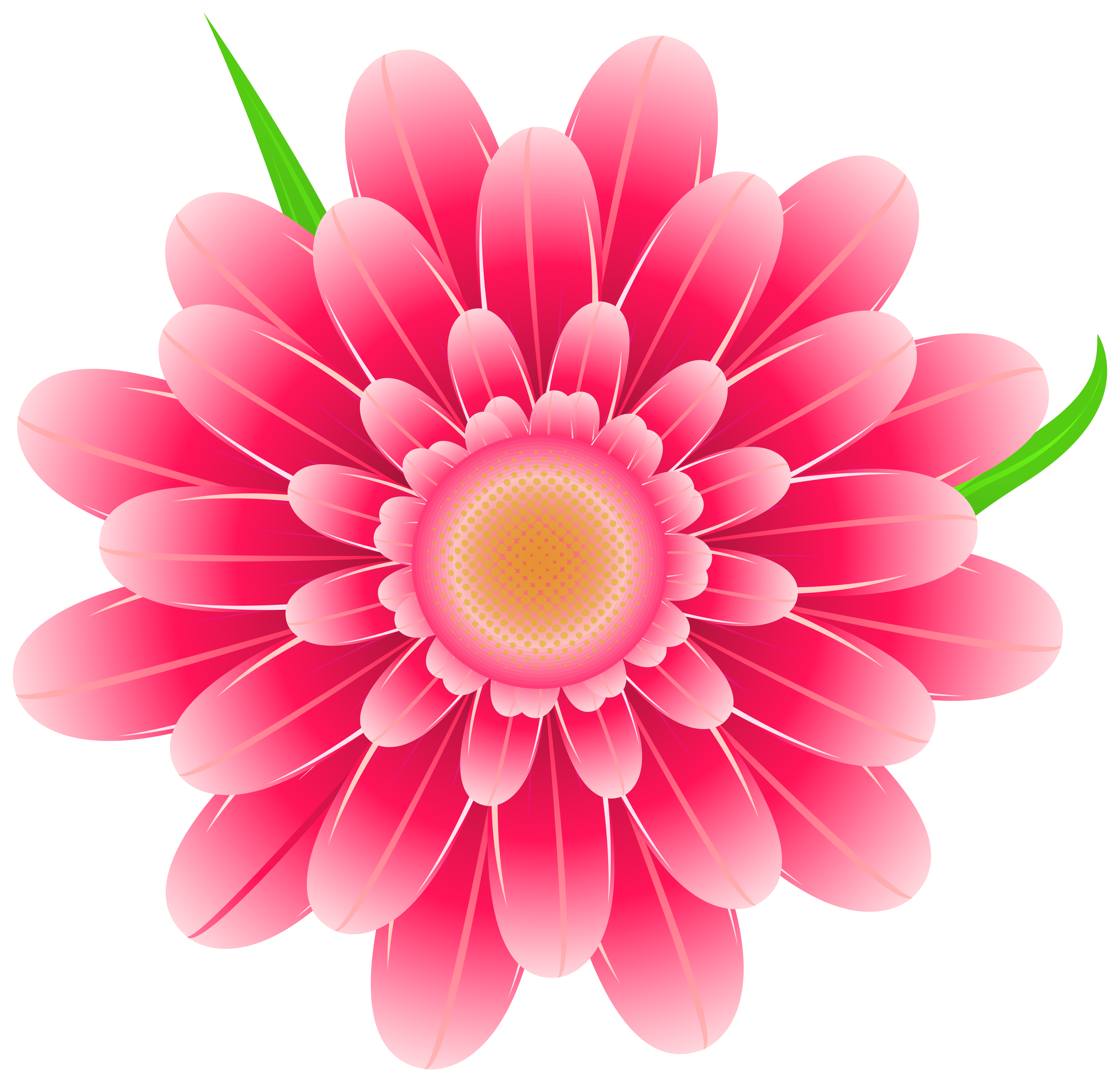 Flower clipart png.  collection of transparent