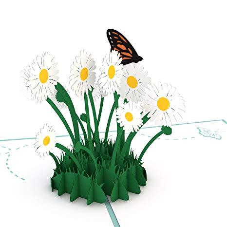 Daisy clipart flower day. Amazon com lovepop patch
