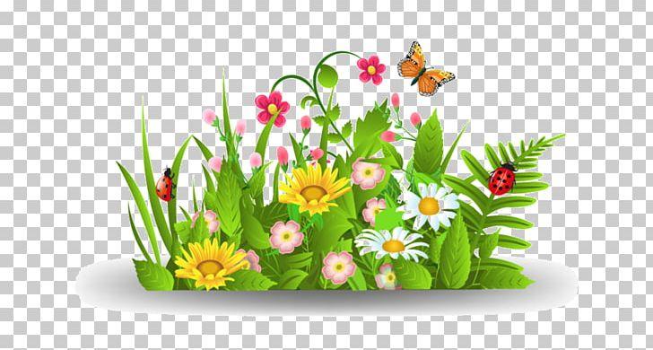 Daisies clipart flowering bush. Flower png art butterfly