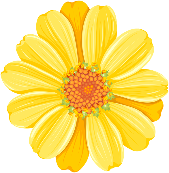 Gallery free pictures . Daisies clipart four flower