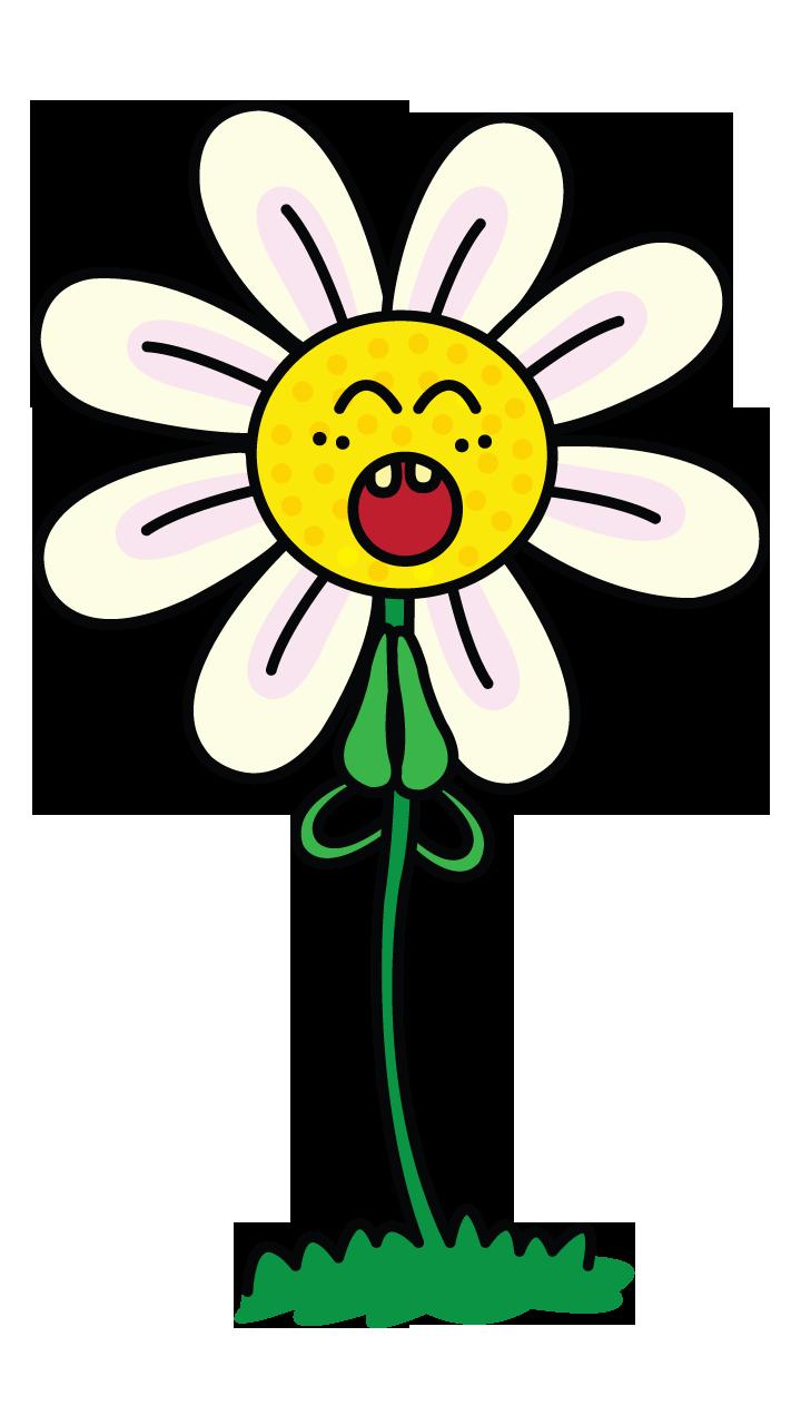Urgent cartoon daisy learn. Daisies clipart four flower