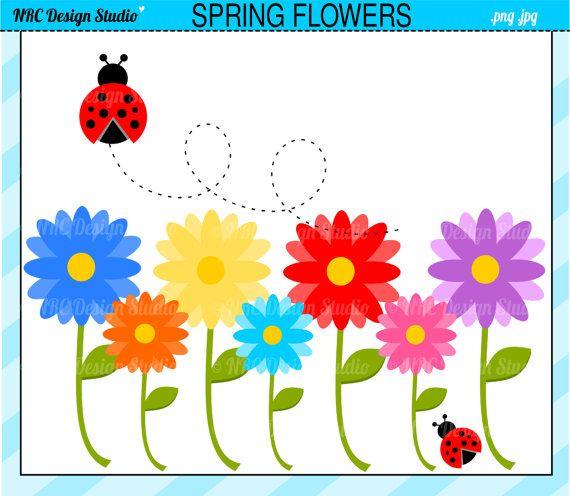 Sale spring flowers garden. Ladybugs clipart daisy