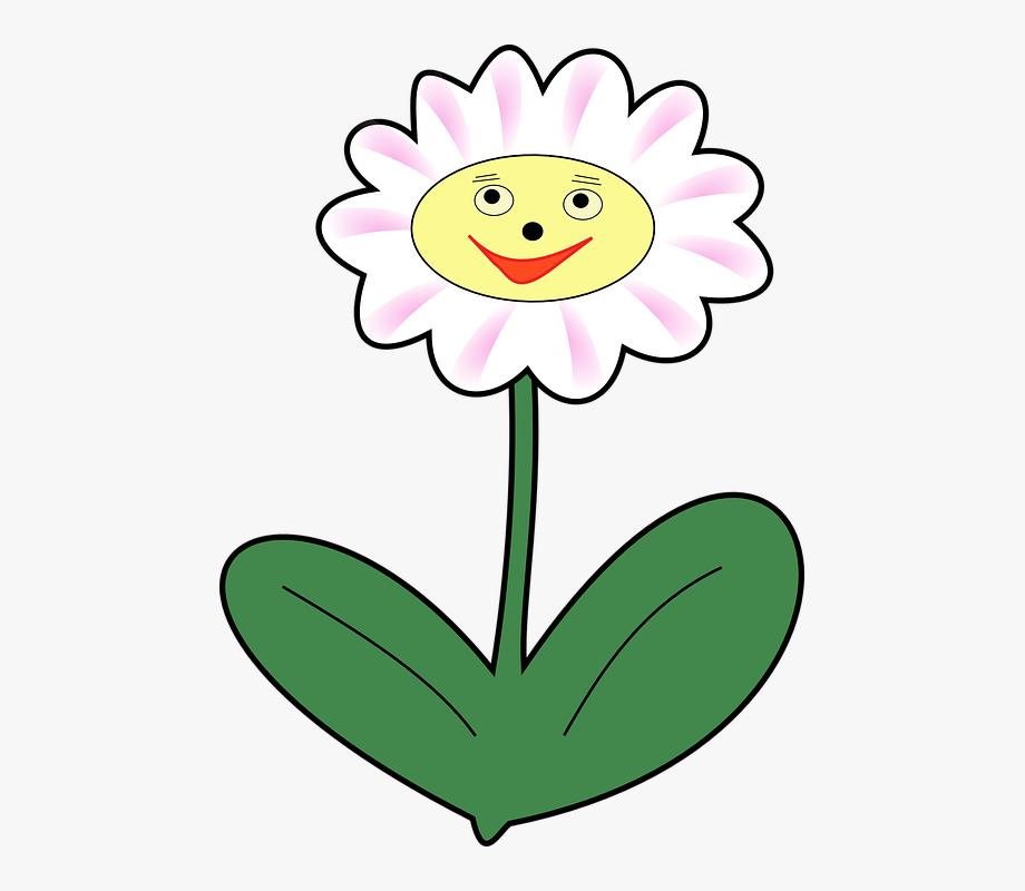 Daisy clipart springtime flower. Plant face happy spring