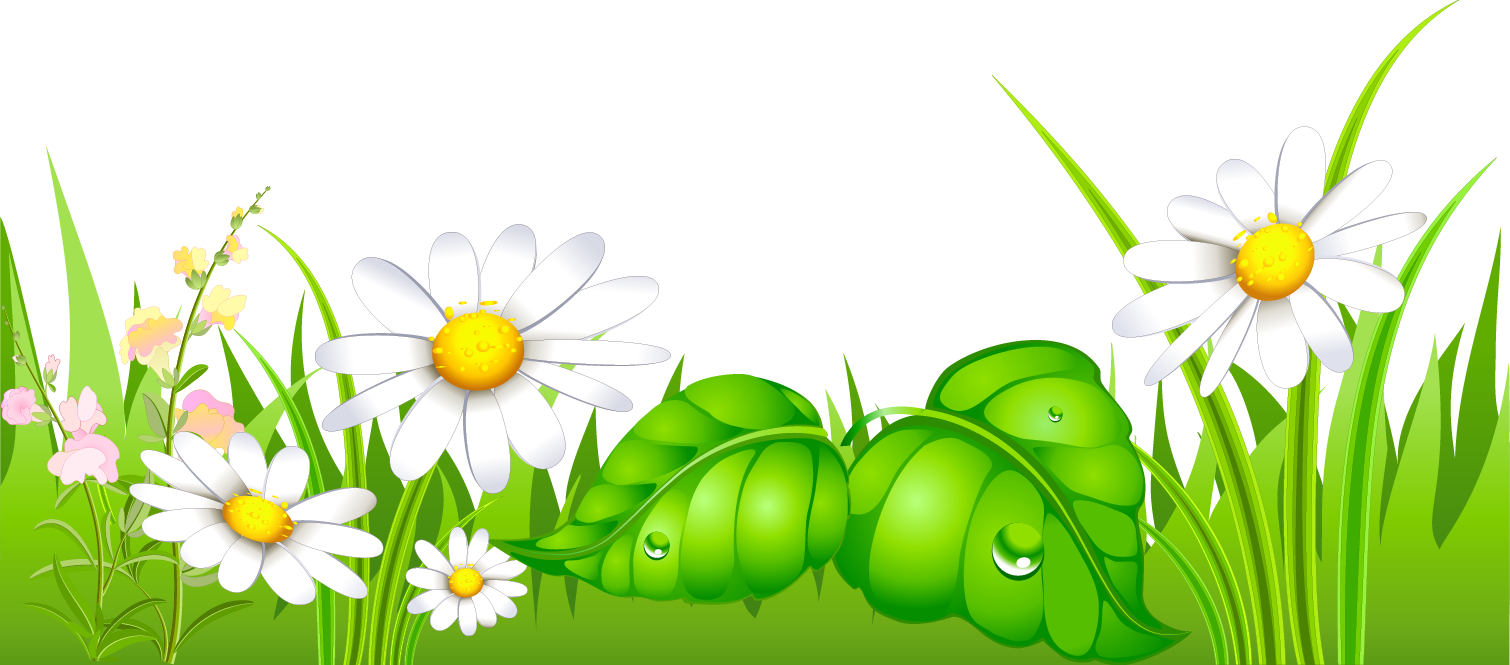 Daisies clipart high grass. With ground gallery yopriceville