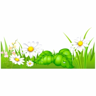 Poppies and with png. Daisies clipart high grass
