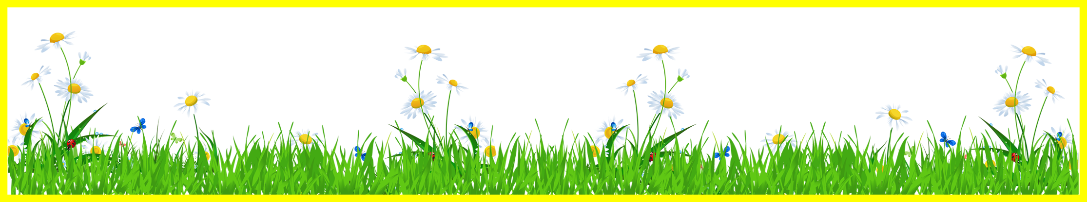 Marvelous grass with daisies. Ladybugs clipart daisy