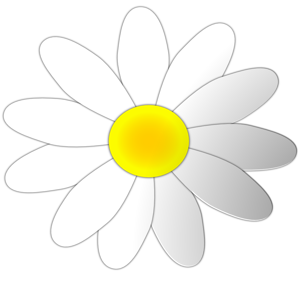 Daisy clipart svg, Daisy svg Transparent FREE for download