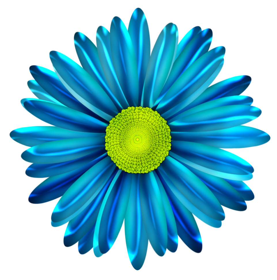 Pin by karen eldridge. Daisy clipart six flower