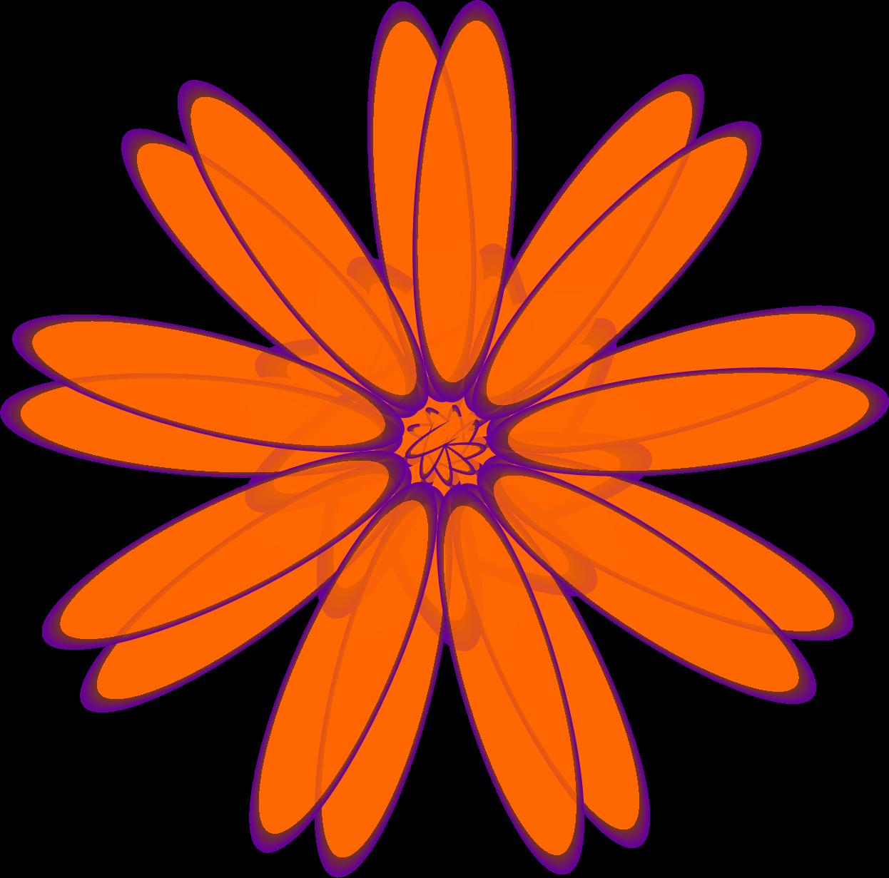 Daisies clipart orange. Daisy big image png
