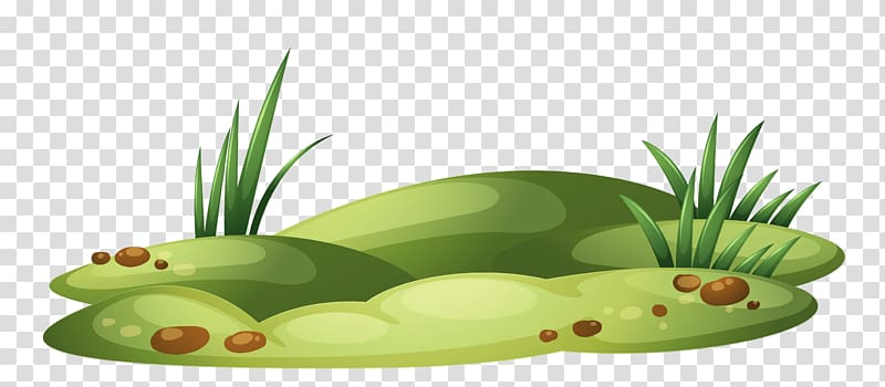 With green illustration transparent. Daisy clipart patch grass