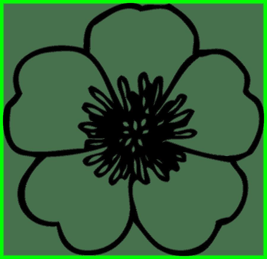daisy clipart printable