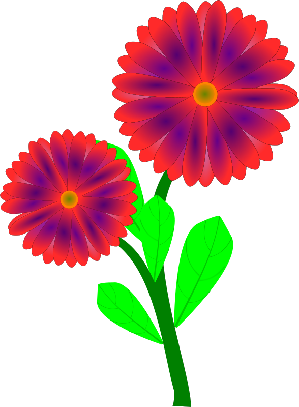 Spring scene pencil and. Daisy clipart large flower