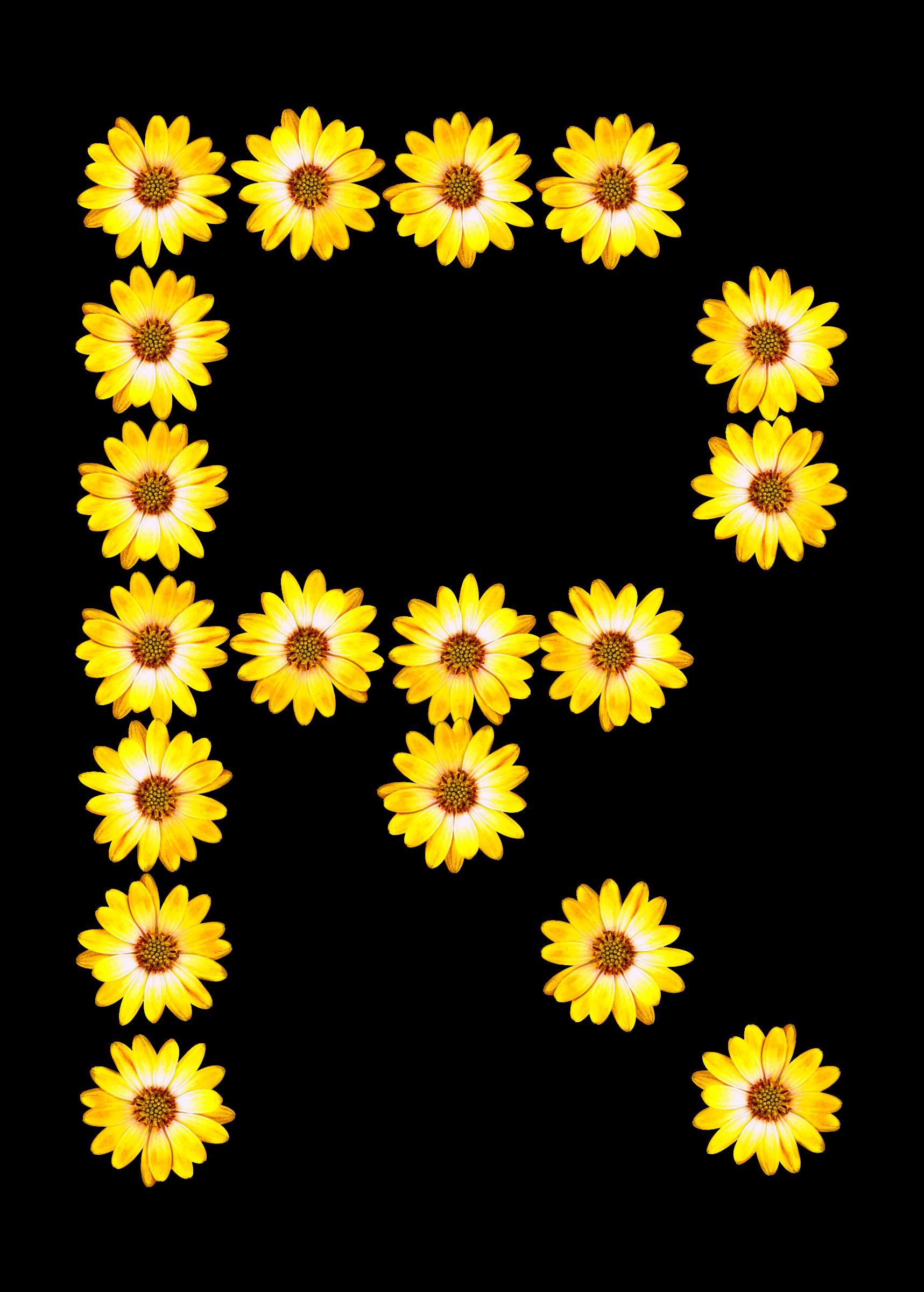 Floral alphabet r big. Daisies clipart smiley