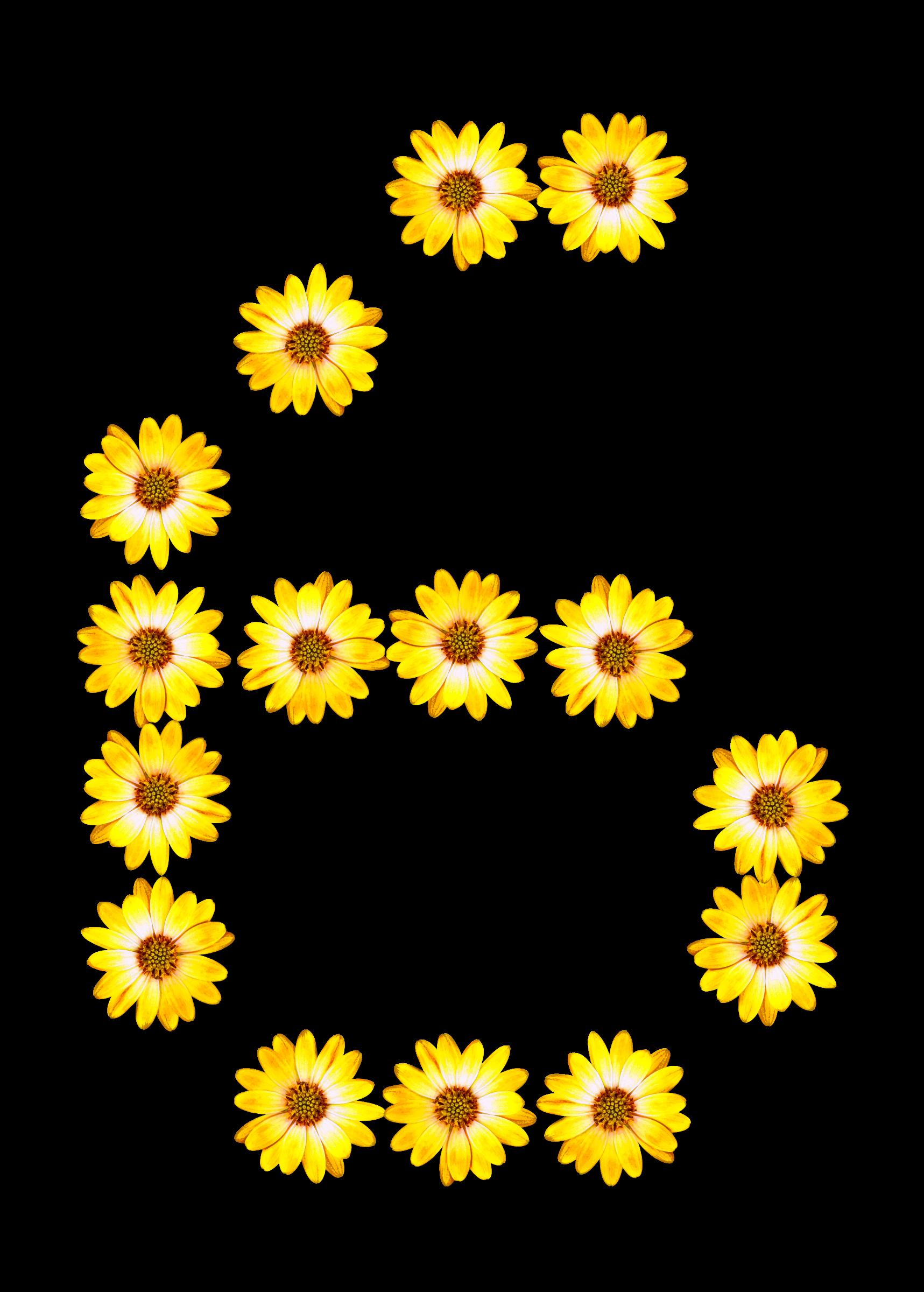 Floral alphabet big image. Daisies clipart smiley