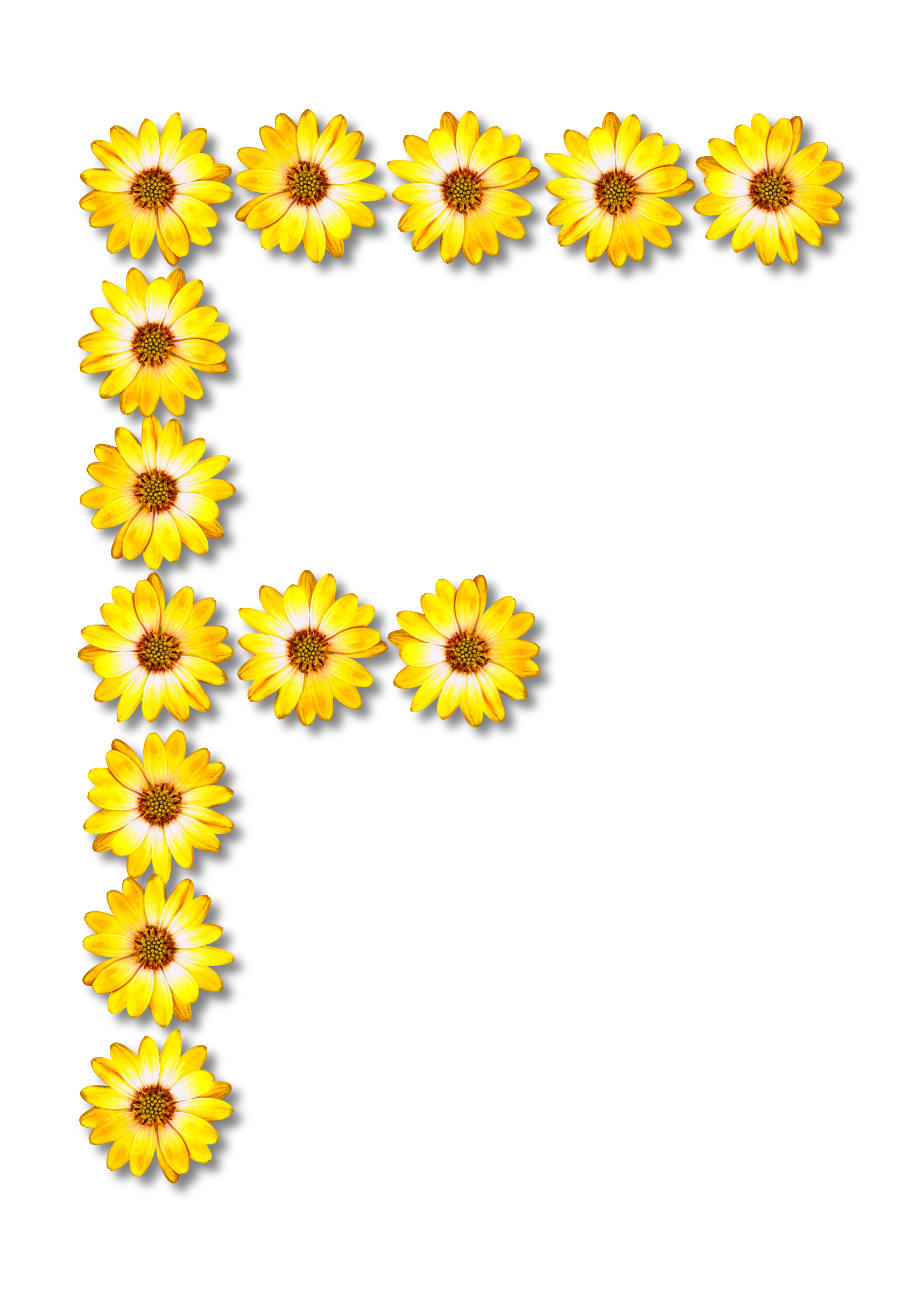Floral alphabet f big. Daisies clipart smiley