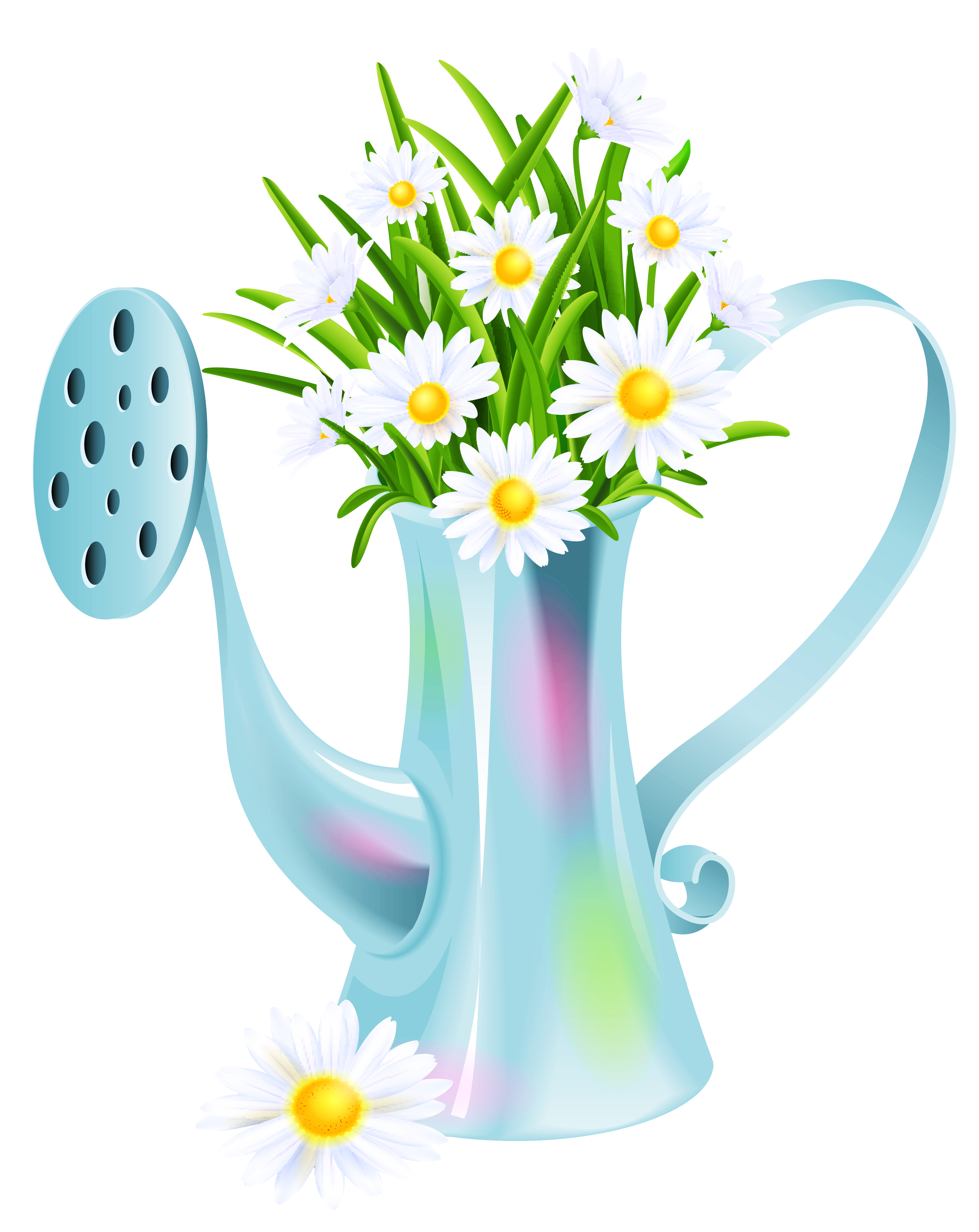 Water clipart spiral. Can with daisies png