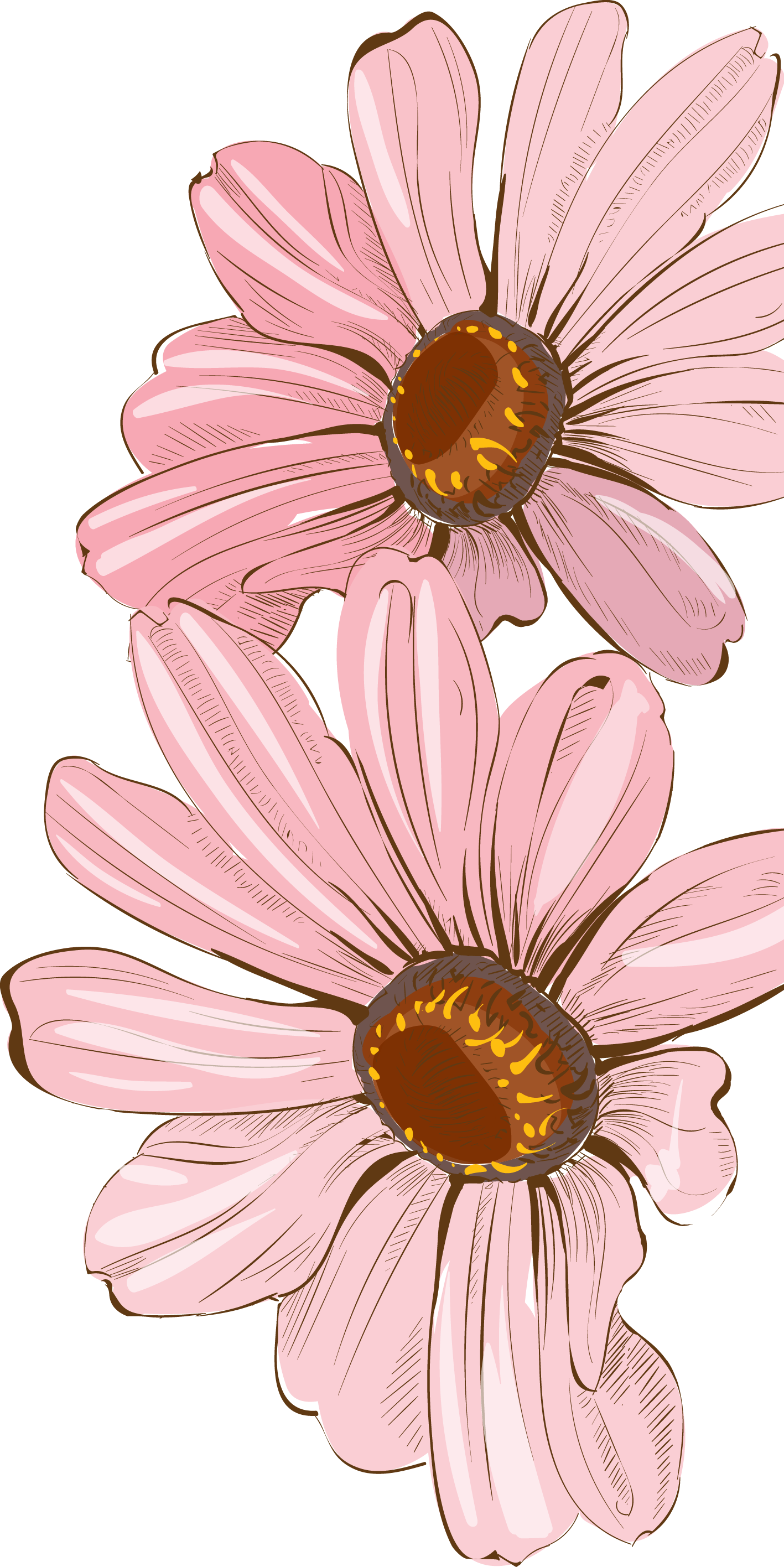 Daisy Flower Clip Art   White Daisy 1 clip art - vector clip art online,  royalty free & public ...   Clip art, Alcohol ink crafts, Free clip art
