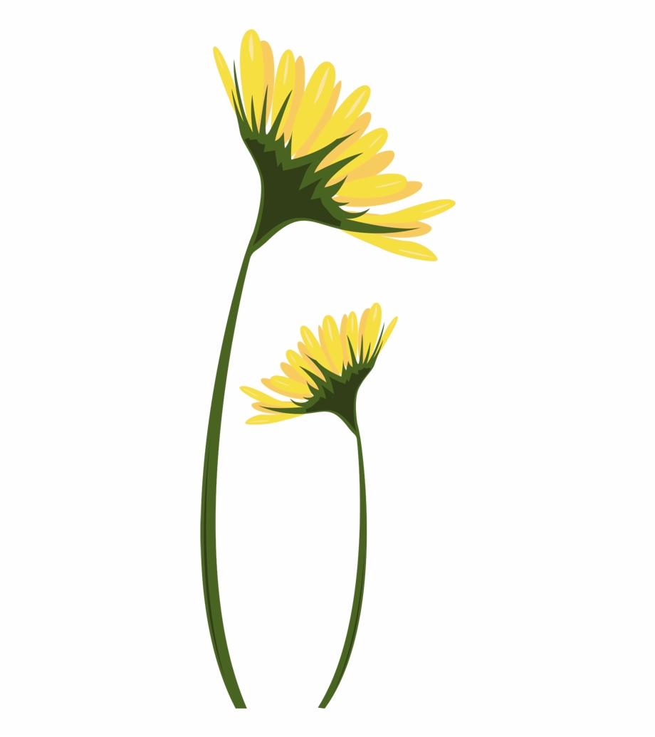 Daisies clipart yellow daisy, Daisies yellow daisy ...