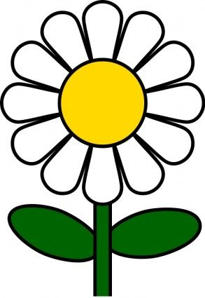 Flowers and plants free. Daisy clipart