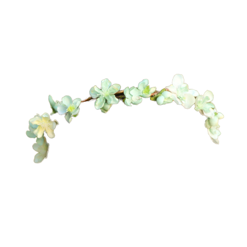 Transparent pictures free icons. White flower crown png