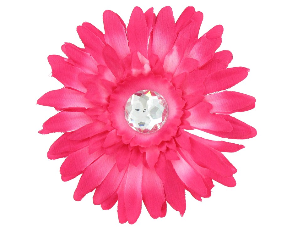 Free gerbera cliparts download. Daisy clipart bright flower