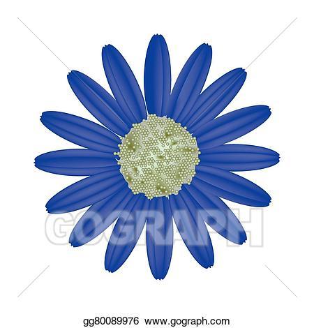 Vector stock blue on. Daisy clipart bright flower