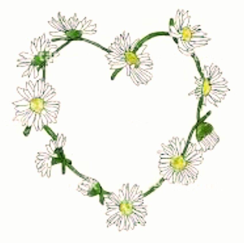 Heart tattoo idea tatts. Daisy clipart daisy chain