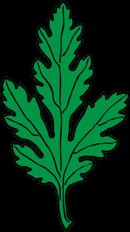 Leaf x free clip. Daisy clipart daisy leaves