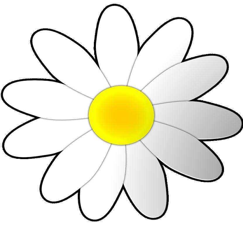 Clip art cliparts co. Daisy clipart flower day