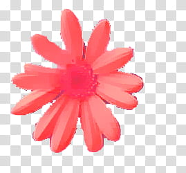 Daisy clipart large flower. Flowers pink transparent background