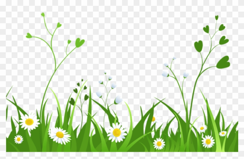 Daisy clipart nature transparent. Download daisies with grasspicture