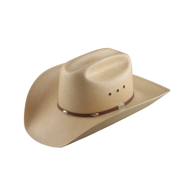 Cowboy hat images download. Dallas cowboys clipart stetson